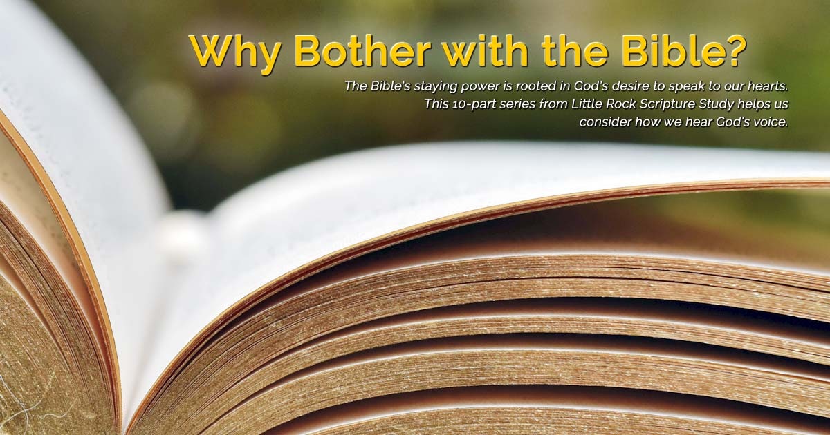 The Bible is an encounter with God's love | DOLR org