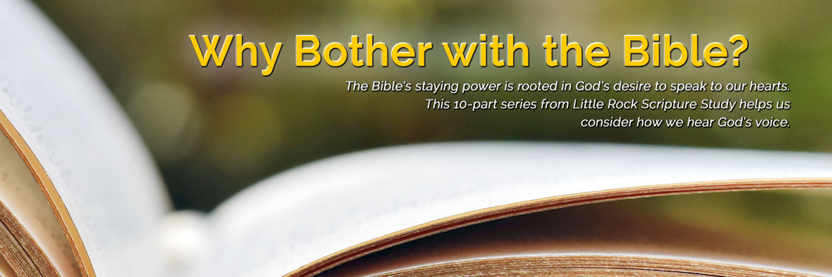 Scripture stirs our religious imagination | DOLR org
